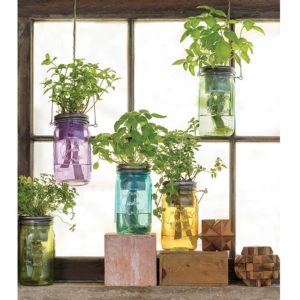 DIY Herb Gardening in Colored Mason Jars with Amazing Self-Watering Facility