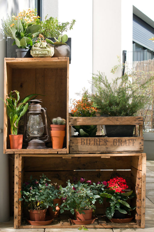Creative Herb Gardening Idea Inside Old Wooden Crate with Terracotta Planters