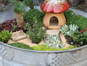DIY Cheap Dollar Store Fairy Garden Idea In A Large Tin Tub
