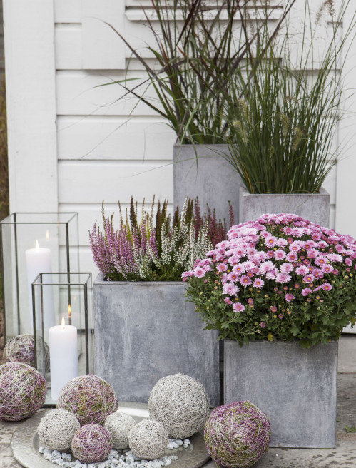 Totally Rustic Porch Look with Heavy-Size Multi-Level Rectangular Concrete Planter