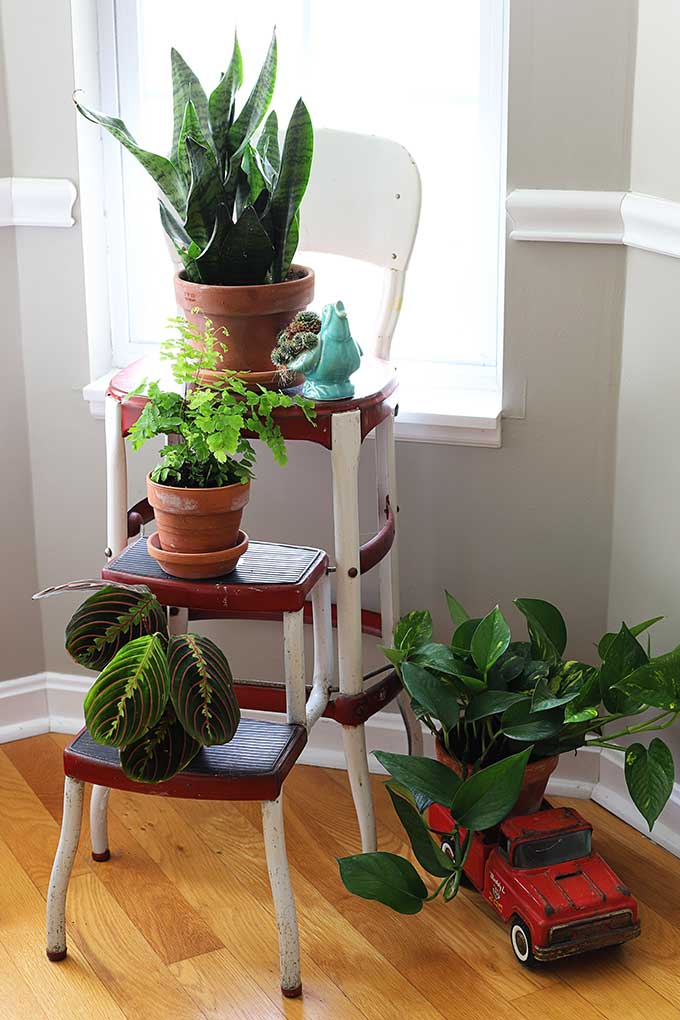DIY Porch Decor Idea with Plant Hanger with Three Tiered Plant Holder By The House of Hawthornes