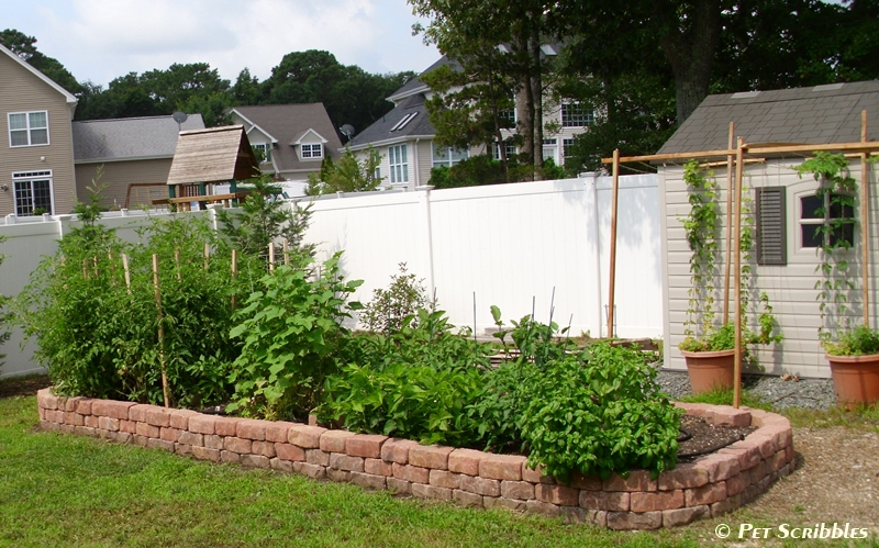 Raised Garden Bed for Vegetables with Old Reusable Bricks with Three Tier Layers