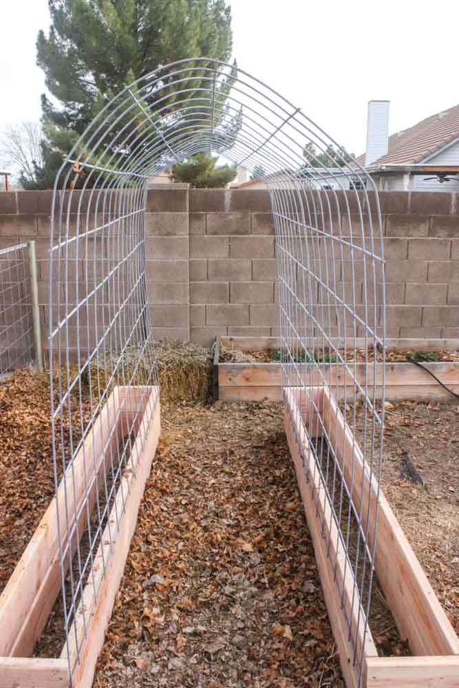 Simple Tutorial of How to Make a Trellis & Raised Garden Box Combo with Cedar Wood and Chic ...