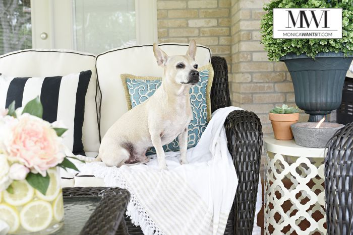 Classy DIY Porch Decor Idea for How to Makeover Your Patio for Spring By Monica Wants It