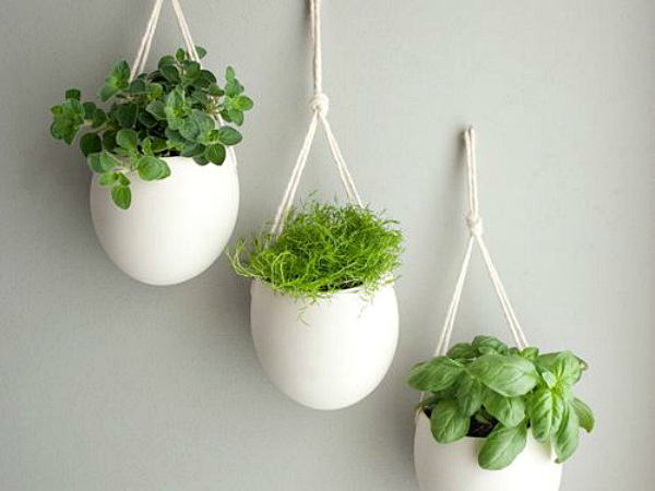 All-White Hanging Planter with Ceramic Pots: Indoor Herb Garden Ideas By Creative Juice