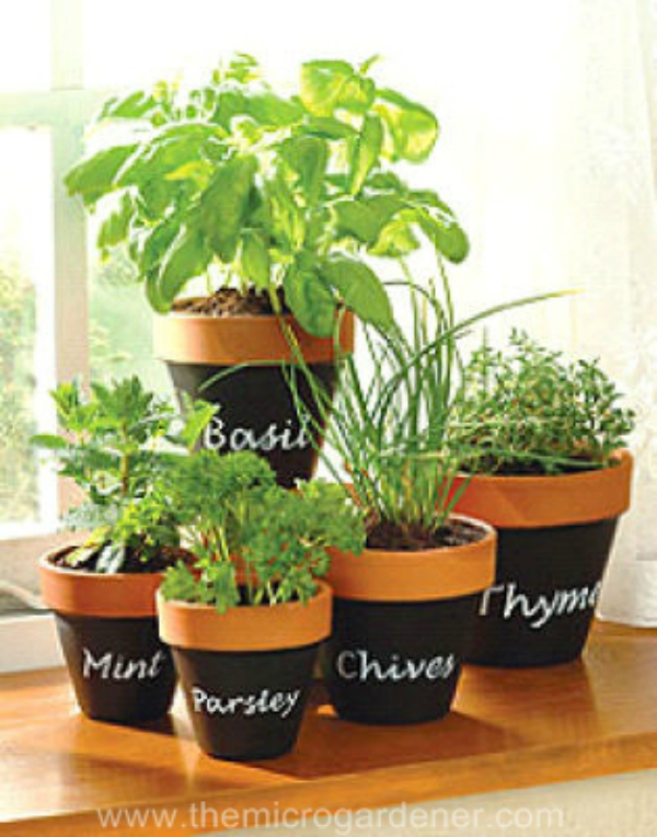DIY Indoor Herb Gardening with Terracotta Planter and Chalkboard Paint for Clear Name Tags