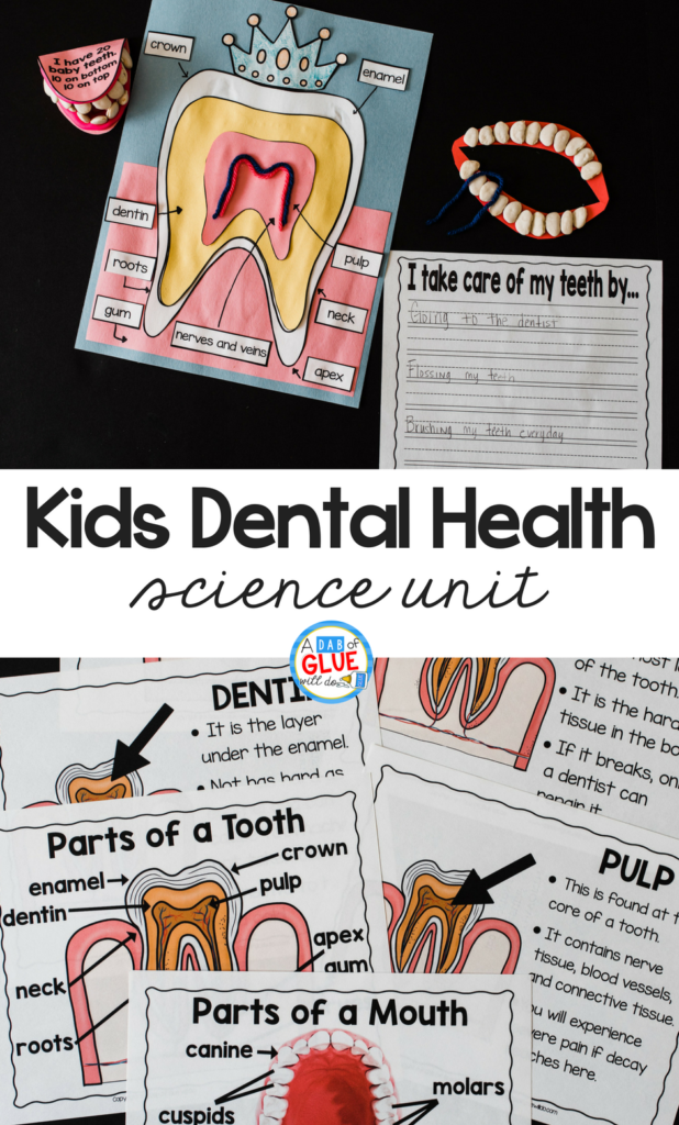 Kids Dental Health Science Unit: A DIY Project on Dental Issue with Proper Tooth Portions