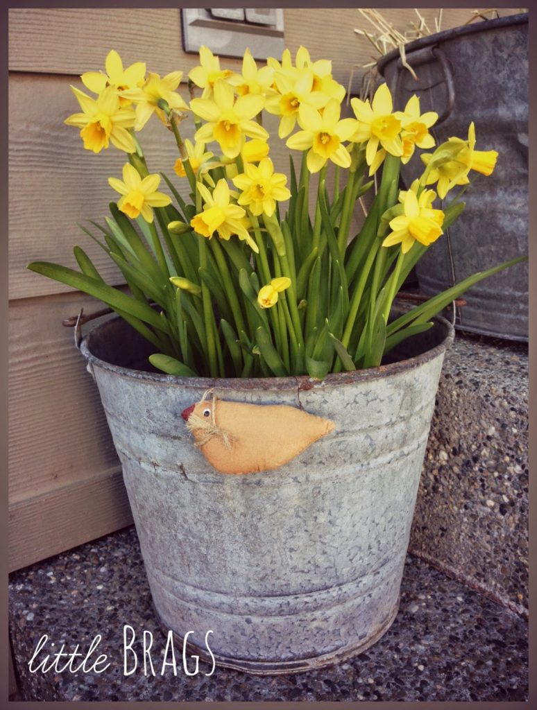 Inspirational Outdoor Decoration Idea in Countryside Style with Recycled Old Washtub Planter