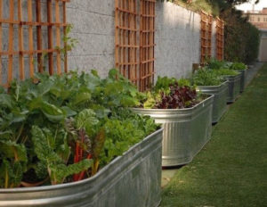 Large DIY Raised Garden Bed with Watering Trough in Attached Trellis Pattern
