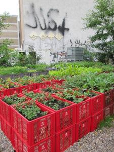 DIY Raised Garden Planter in Metallic Milk Crates: A Colorful Raised Bed Idea with Repurpose Mat ...
