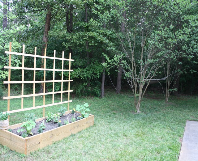 Narrow Raised Bed Garden With Diy Wooden Trellis By Emily A Clark