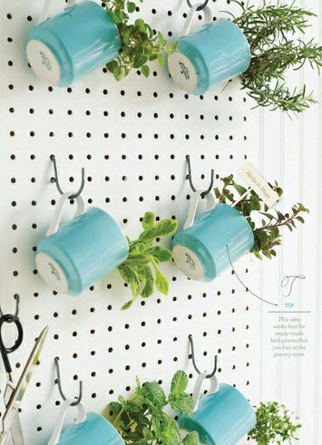 DIY Vertically Hanging Herb Gardening with Cup-Turn Planters: Gardening with Home Decor
