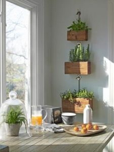 Farmstyle Indoor Herb Gardening with Wooden Box Planters Hanging with Metallic Clumps