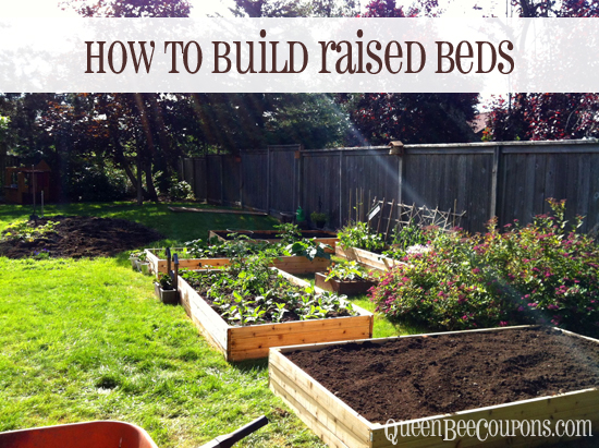 Tutorial of How to Build Raised Beds Quickly with Simple Cedar Planks