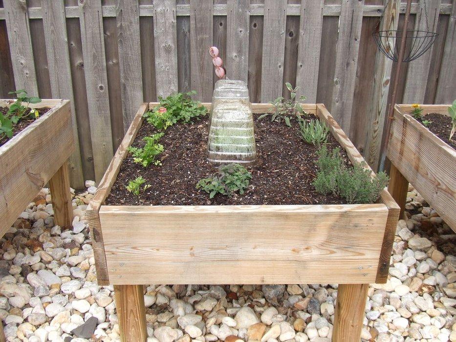 Raised Garden Bed on Lumber Legs: A Smart Raised Garden Planter Idea for Rocky Garden Area