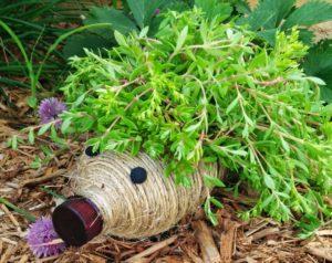 Hedgehog Planter from Plastic Bottle DIY: A Creative Garden Decor Idea for Herbs