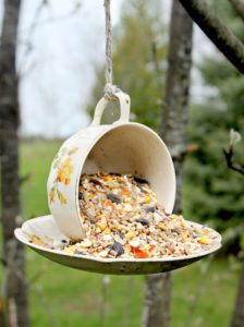 Tea Cup Bird Feeder: A Smart DIY Garden Projects in Recycling Style