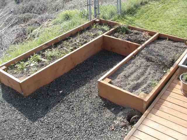 The Runner Duck Raised Beds Project with Easy Step by Step Instructions.