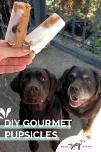 Gourmet Pupsicles: Frozen YOgurt Blueberry Peanut butter Dog Treats