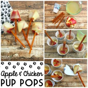 Apple & Chicken Broth Frozen Dog Treat