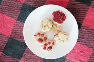 Banana Apple Cranberry Fresh Mint Dog Treats