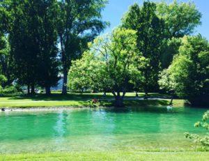 Landiwiese in Zürich – Switzerland Parks to Walk Swim Relax