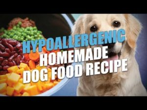 Hypoallergenic Homemade Dog Food Recipe [Video] – For Allergies