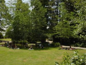 Arboretum Zurich Lakeside park & botanical garden – Swiss Places to Visit
